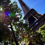 Eiffel tower with a tree in the foreground - a French symbol
