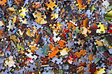 Puzzle pieces symbolising diversity.